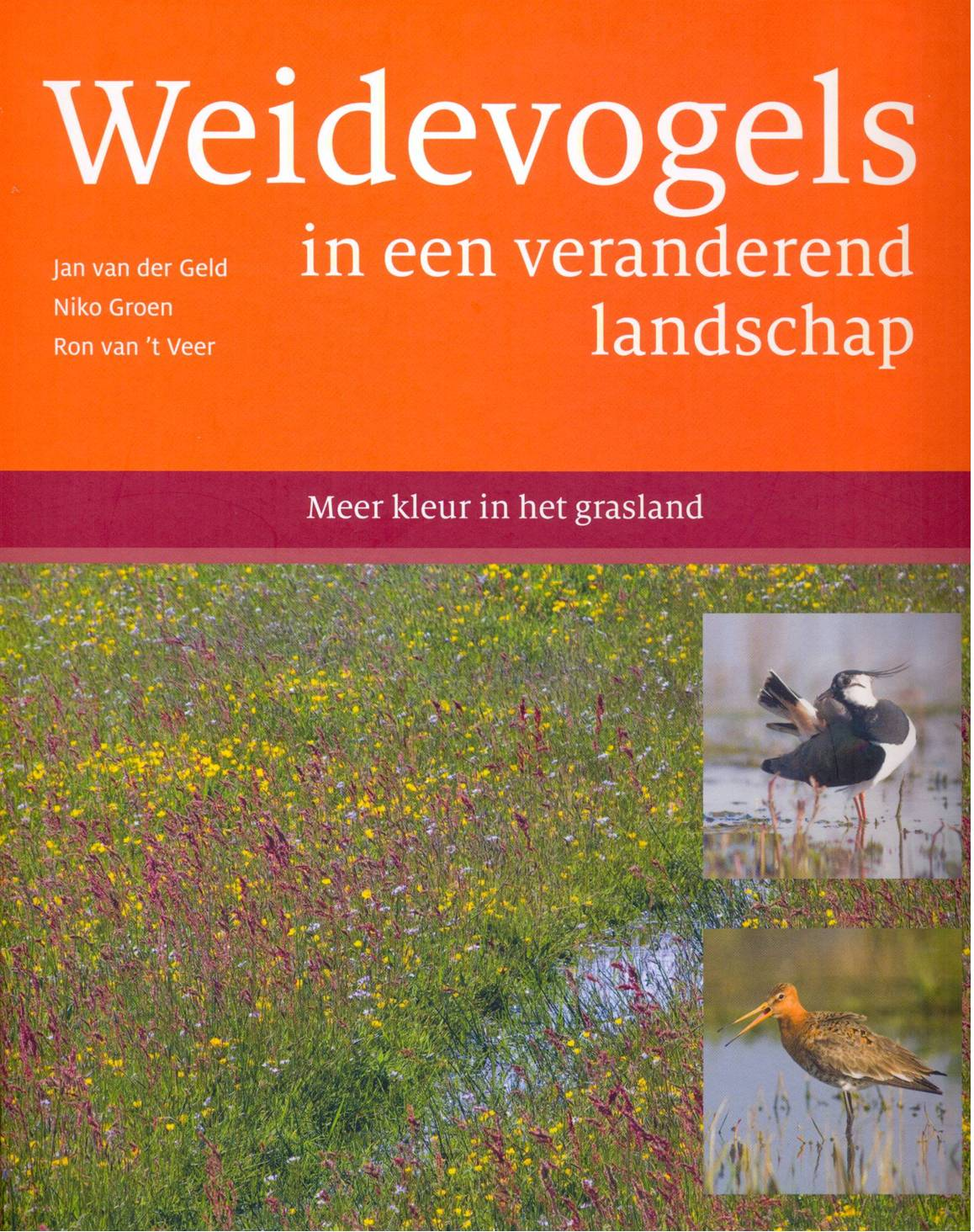 Weidevogels in ...._cr