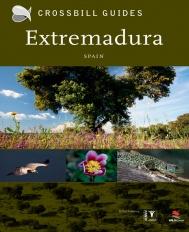 Crossbill - Extremadura