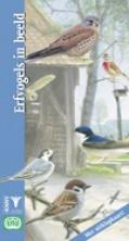 Erfvogels in beeld